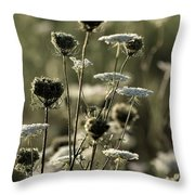 Queen Annes Lace - 1 Throw Pillow