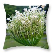 Queen Anne's Lace Flower Unfolded Throw Pillow