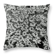 Queen Anne's Lace In Black And White Throw Pillow