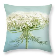 Queen Anne's Lace Wildflower Throw Pillow