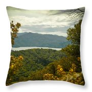 Queen Charlotte Sound Throw Pillow