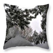 Queen City Winter Wonderland After The Storm Series 0031 Throw Pillow