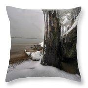 Queen City Winter Wonderland After The Storm Series 0037 Throw Pillow