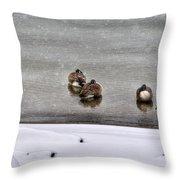 Queen City Winter Wonderland After The Storm Series 0043 Throw Pillow