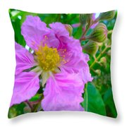 Queen Flower Or Giant Crepe Myrtle Flower Throw Pillow by Lanjee Chee