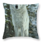 Queen Of The West Throw Pillow