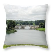 Queen Pool Blenheim Throw Pillow