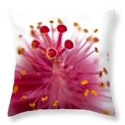 Queens Crown Throw Pillow
