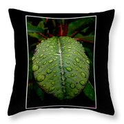 Quenched 2 Throw Pillow
