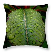 Quenched Throw Pillow