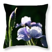 Quenched Overnight Throw Pillow