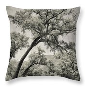 Quercus Suber Retro Throw Pillow