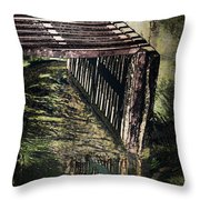 Questions And Answers Throw Pillow by Deborah Benoit