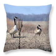 Quick Put Your Head Down Throw Pillow
