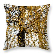Quiet Charm Of Autumn Throw Pillow