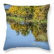Quiet Cove Throw Pillow
