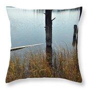Quiet Day On Yellowstone's Goose Lake Throw Pillow