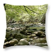 Quiet Place In The Smokies Throw Pillow