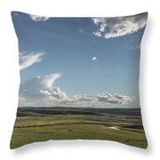 Quiet Prairie Throw Pillow by Jon Glaser