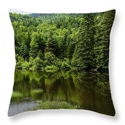 Quiet Rain And Forest Fairies Throw Pillow