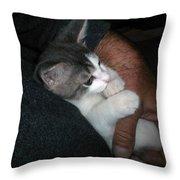 Quiet Time With Jackson Throw Pillow