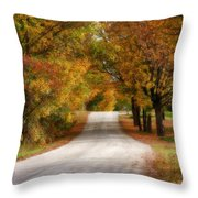 Quiet Vermont Backroad Throw Pillow