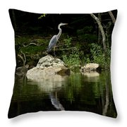 Quiet Waters Throw Pillow