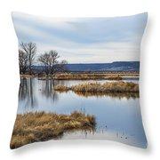 Quiet Wetlands Throw Pillow