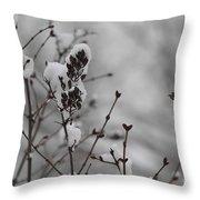 Quiet Winter Throw Pillow
