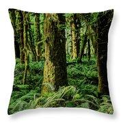 Quinault Rainforest Throw Pillow