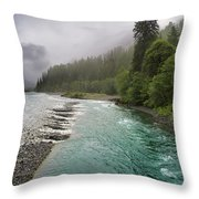 Quinault Serenity Throw Pillow