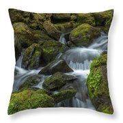Quinault Waterfall Throw Pillow