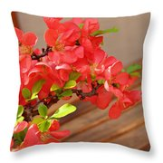 Quince Blossoms Throw Pillow