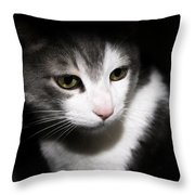 Quint Throw Pillow