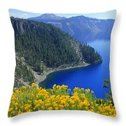 D2m5622-rabbit Brush At Crater Lake Throw Pillow