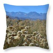 Rabbit Brush Owens Valley Throw Pillow