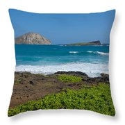 Rabbit Island Throw Pillow
