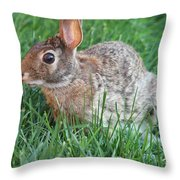 Rabbit On The Run Throw Pillow