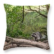 Raccoon At The Lake Throw Pillow