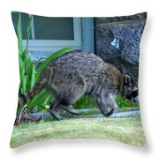 Raccoon In Flight Throw Pillow