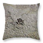 Raccoon Print Throw Pillow