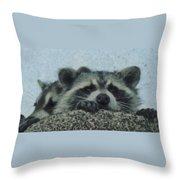 Raccoons Painterly Throw Pillow