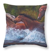 Race For Freedom Throw Pillow