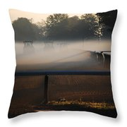 Race Of The Deere's Throw Pillow