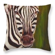 Racer, Zebra Throw Pillow