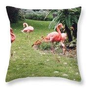 Racing Flamingos Throw Pillow