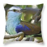 Racket Tailed Roller Throw Pillow