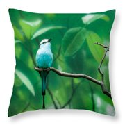 Racquet Tailed Roller Throw Pillow