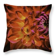 Radial Edge Throw Pillow