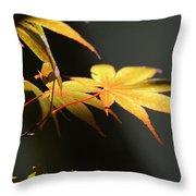 Radiance Throw Pillow